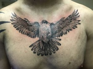 Falcon Tattoo in Society with New Ideas